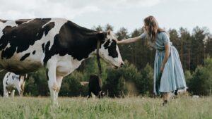 inek sesi - gerçek inek videosu - çocuklar için inek videoları