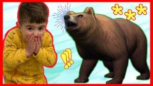 EVDE AYI VAR❗ Eve Ayılar Girdi | Ayı Videosu | Eğitici Çoçuk Videoları | Bebek Videoları | Funnykids