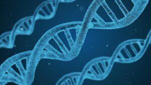 Türklerin genetik olarak en çok hangi topluma benzediği ortaya çıktı.